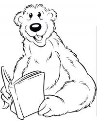 Bear is reading book