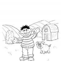 Ernie on the farm