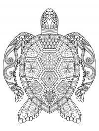 Turtle mandala tattoo