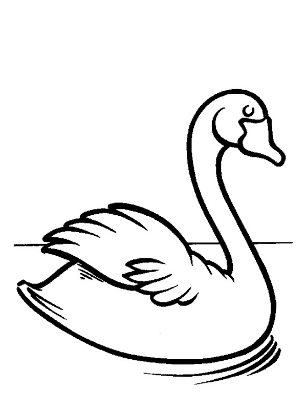 coloring page Swan
