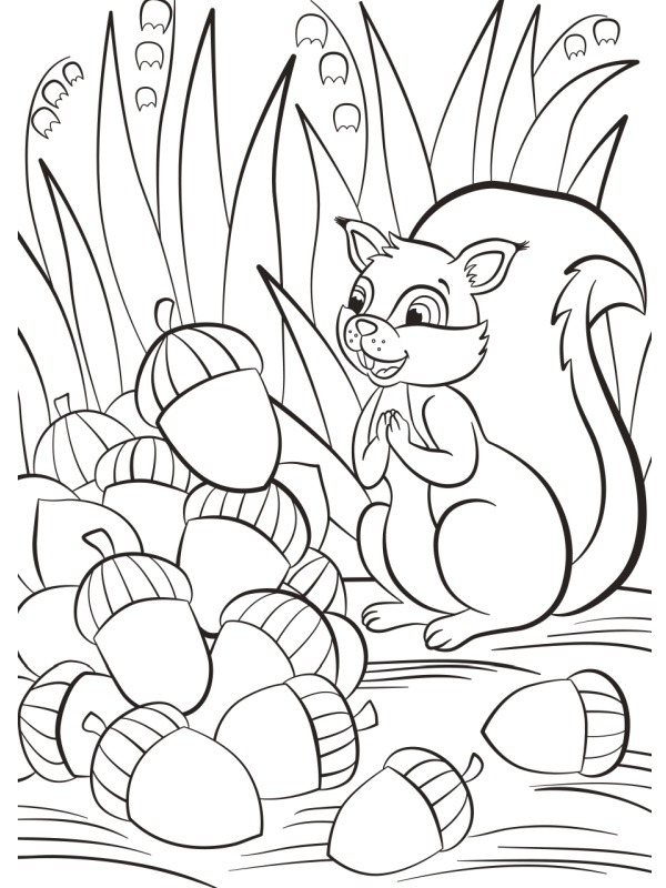 coloring page Squirrel with acorn