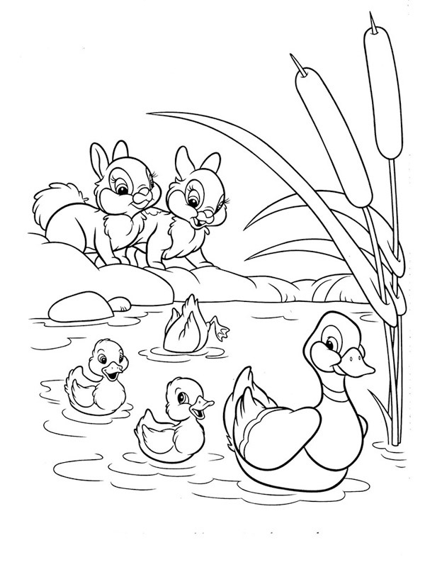 coloring page Ducks and rabbits