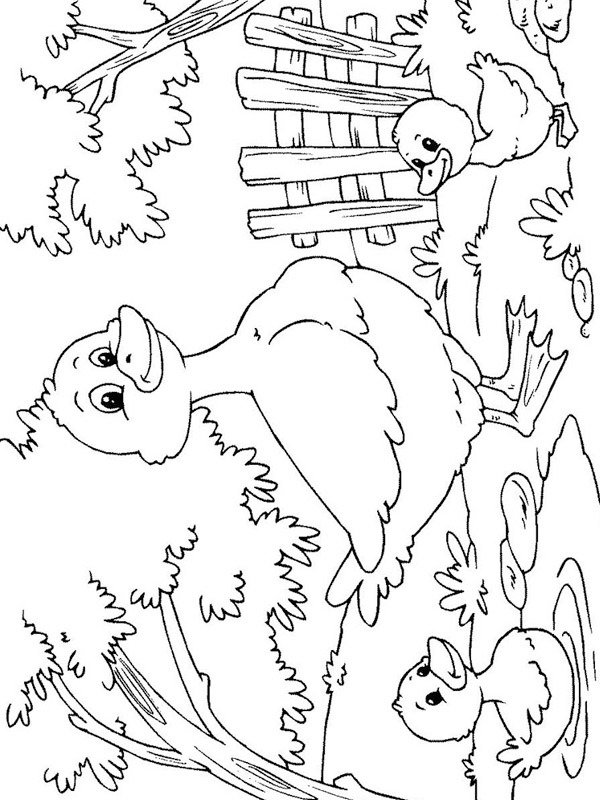 coloring page Ducklings with mother duck