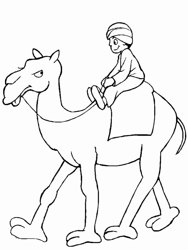coloring page Camel
