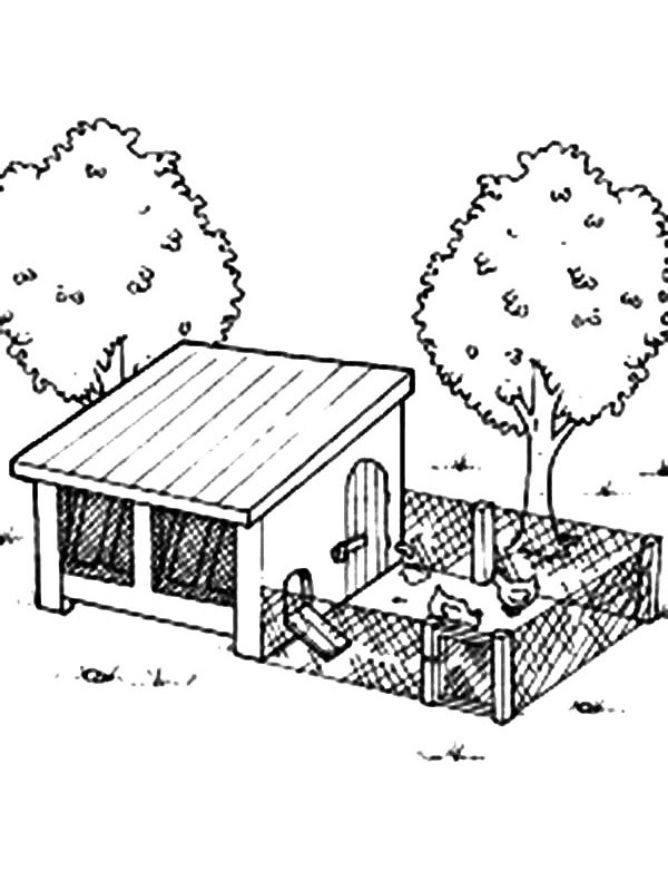 coloring page Chicken coup