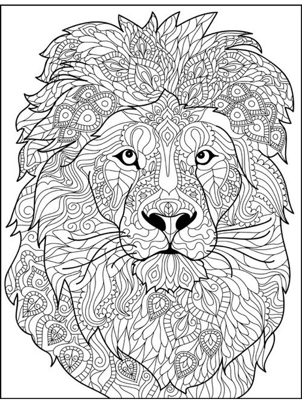 coloring page Lion for adults