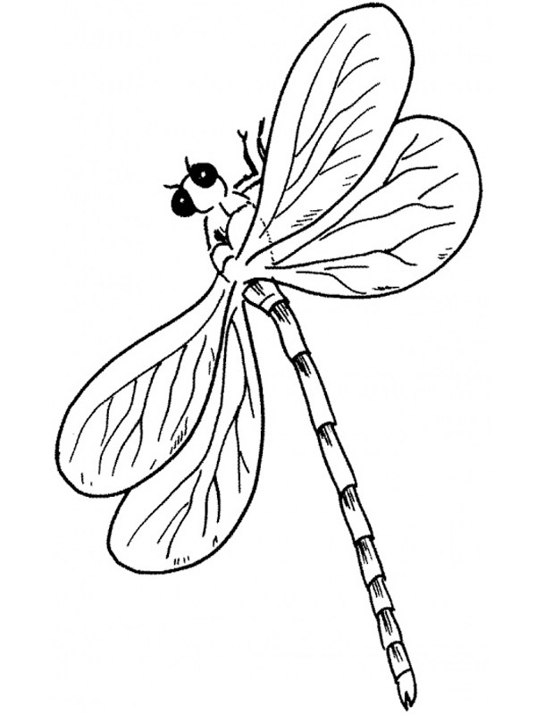 coloring page dragonflies