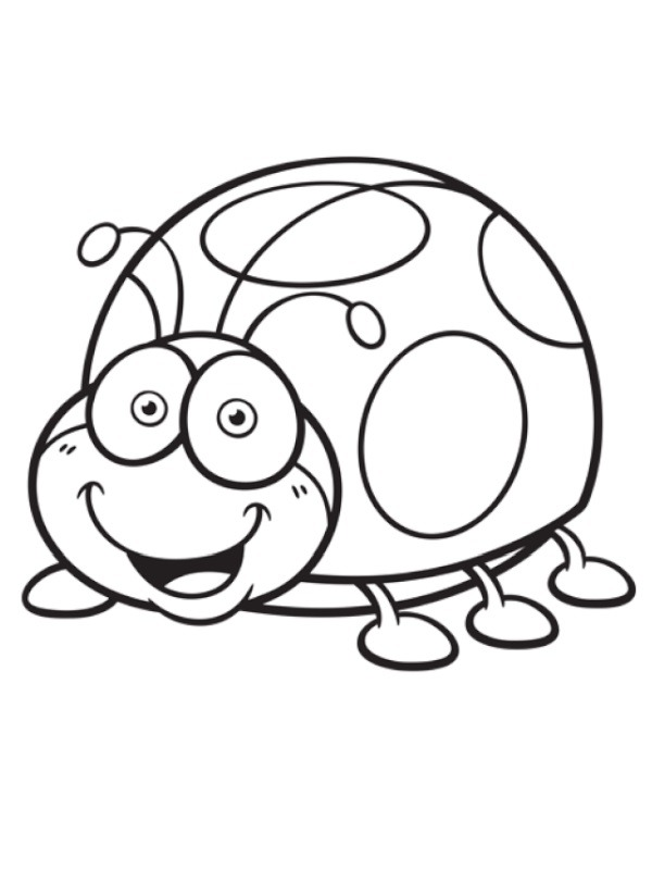 coloring page Coccinellidae