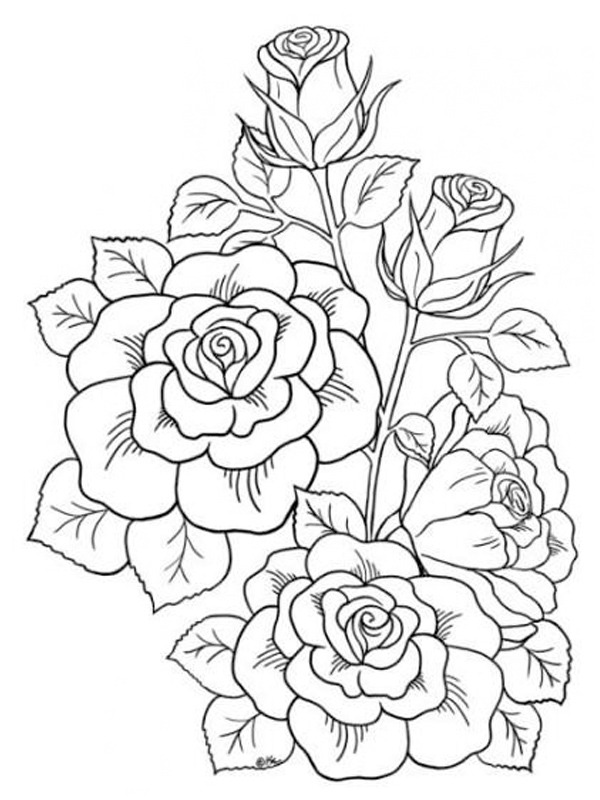 coloring page Roses tattoo