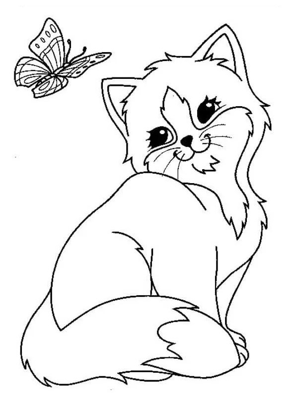coloring page butterfly and kitten