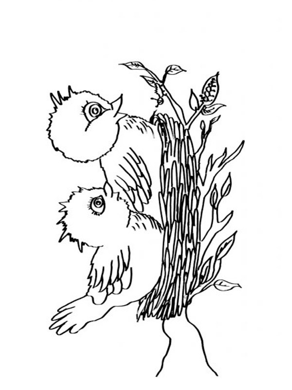 coloring page Birds nest